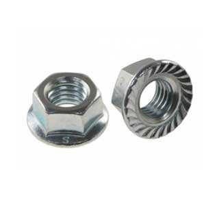 Stainless 347H Serrated Steel Nuts Manufacturer in India
